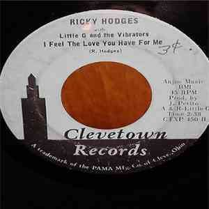 Ricky Hodges With Little G & The Vibrations - Don't Blow No More / I Feel The Love You Have For Me album